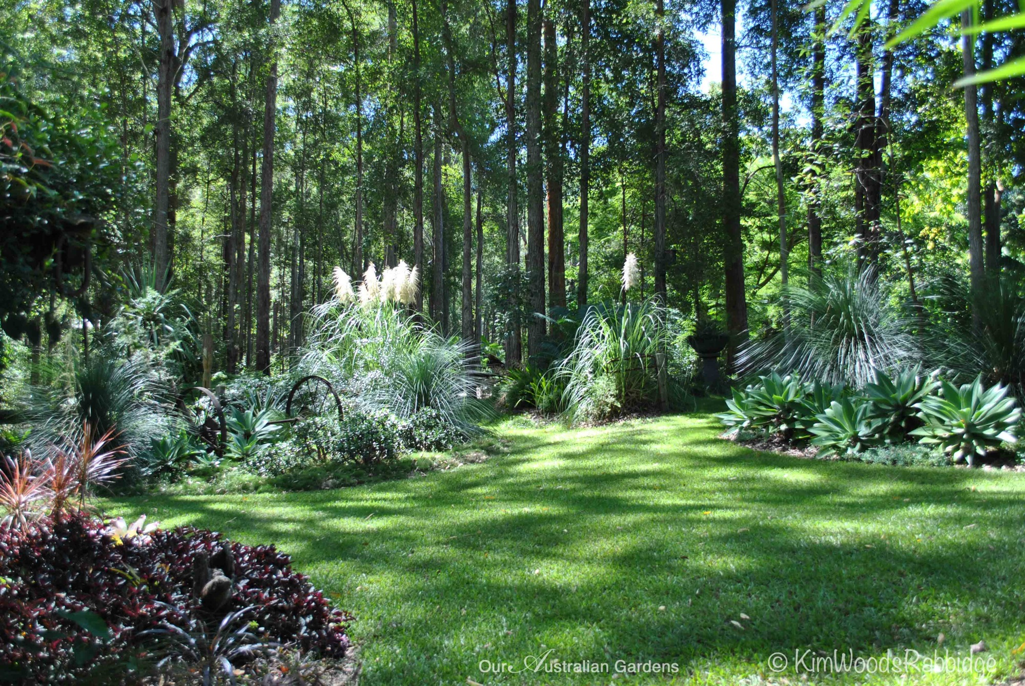 Stringybark cottage garden woodland wonder our for Fine gardens landscaping