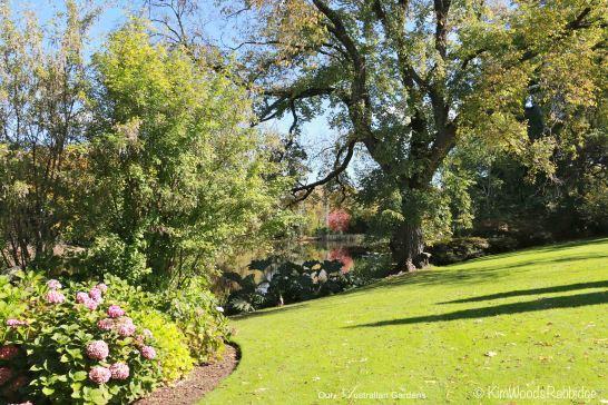 Culzean3©KimWoodsRabbidge-Our-Australian-Gardens