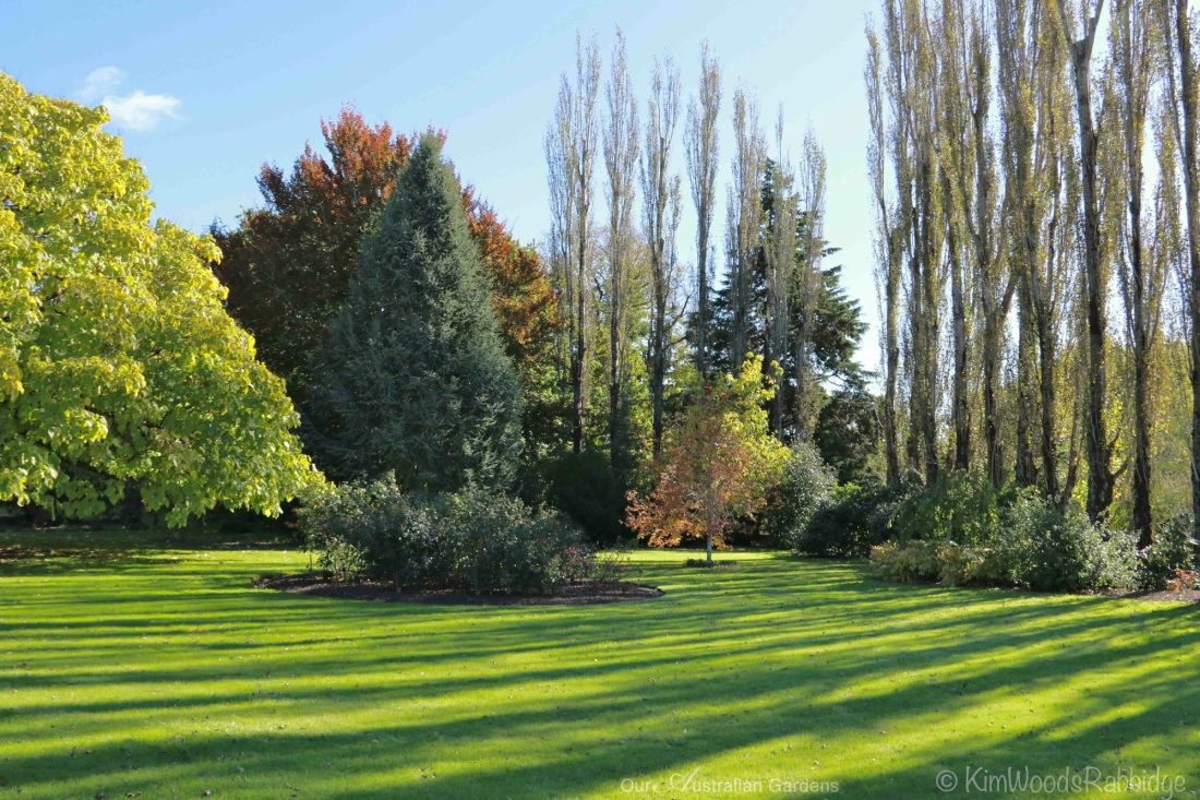 Culzean22©KimWoodsRabbidge-Our-Australian-Gardens
