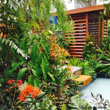 Jim Fogarty garden Singapore6©OAG