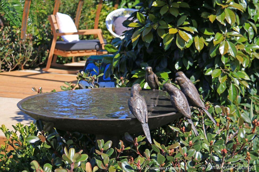 Willy Wildlife's birdbath featuring parrots added to the charm of Cache.