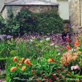 Muted stone is the perfect background to the vivid colour in thegarden