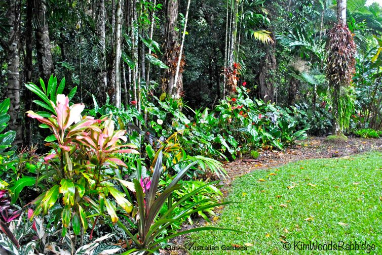 Cordylines and myriad other flowering and foliage plants add to the rich palette.