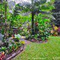 Kuranda forest garden ©Kim WoodsRabbidge