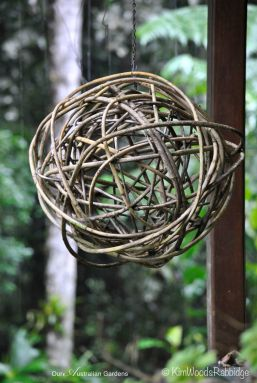 Wait-a-while vine woven into an ornamental sphere.