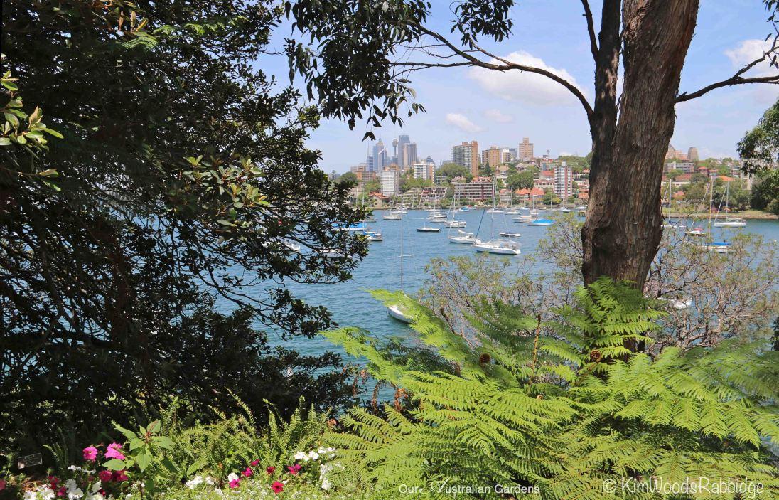 Through to Sydney Harbour from Nutcote's veranda.