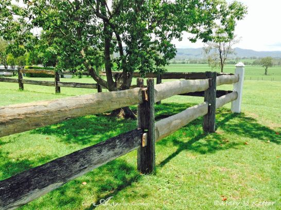 Post and rail fences surround the grounds.
