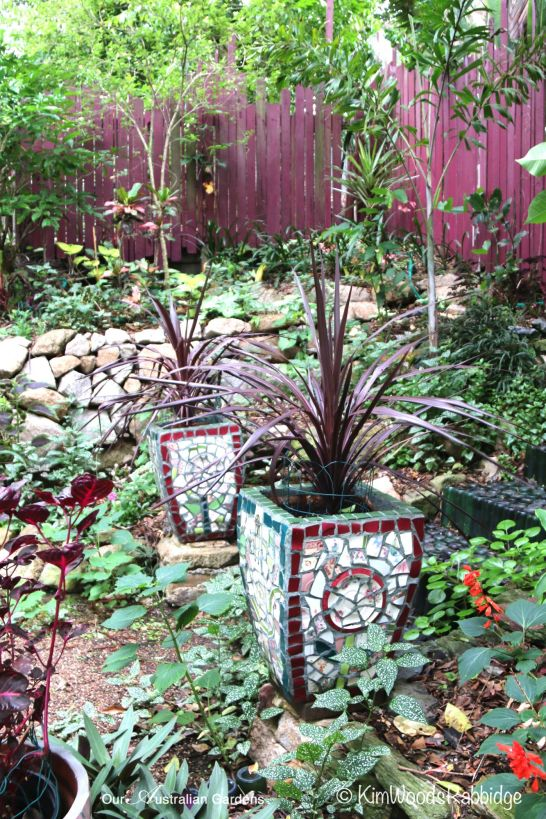 A pair of mosaic pots support hardy cordyline 'Burgundy Spire'.