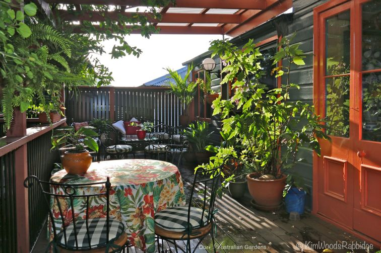 The back deck, Glenn's 'treehouse', looks out into the canopy, and over the garden.