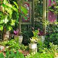 West End garden arbour ©Kim WoodsRabbidge