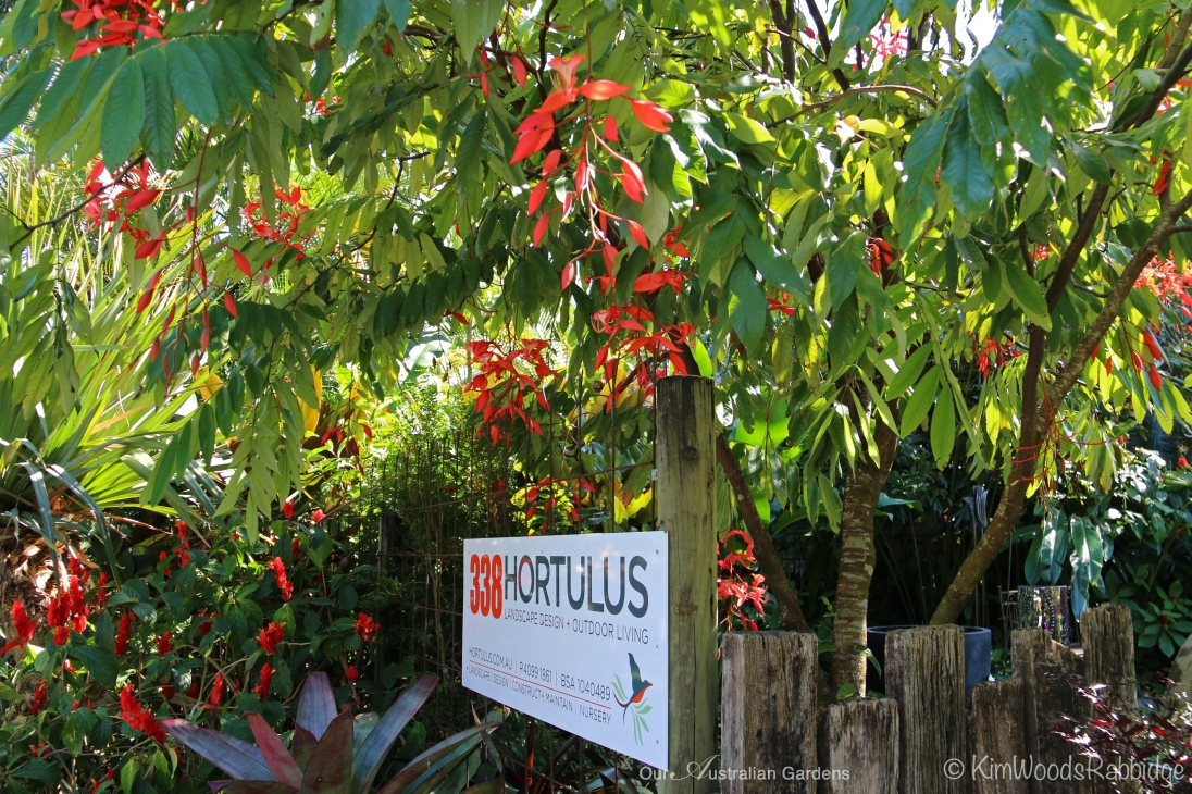 Designer John Sullivan's nursery in Port Douglas.