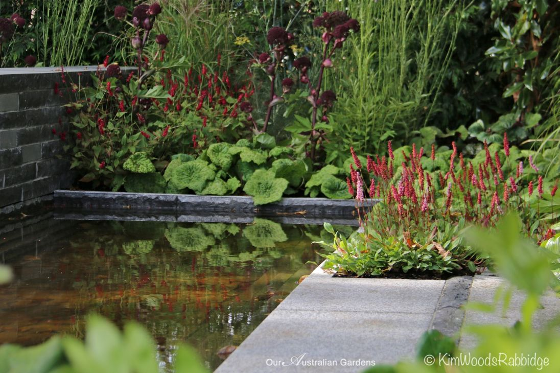Reflective pond.