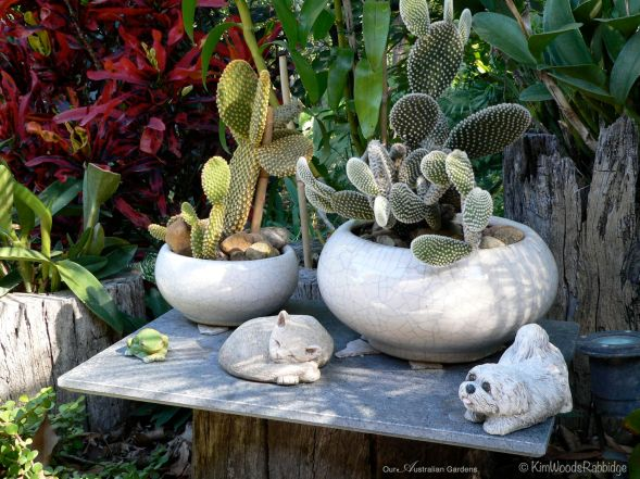 A quirky collection of cactus and tchotchkes.