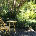 Moore garden setting ©Kim WoodsRabbidge