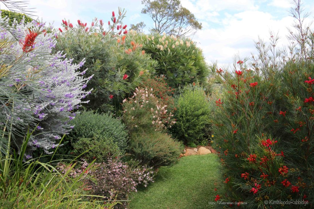 Clipped shrubs are choreographed into position to appreciate contrasting foliage and blooms.