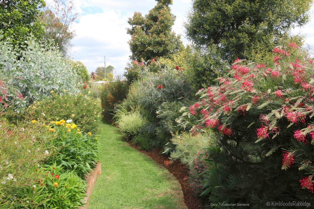 u2018terrara u2019  u2013 a native garden haven  u2013 our australian gardens