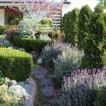 McKeon garden1©Kim WoodsRabbidge15